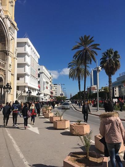 第10回 イノベーションの春は到来するのか(チュニジア)《新興国発 ...